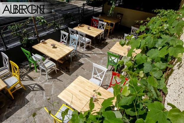 aubergine_garden